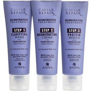 Alterna - Repair - RX Reconstruction Treatment Kit