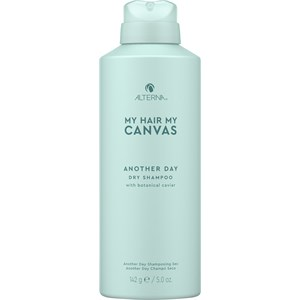 Alterna - Styling - Another Day Dry Shampoo