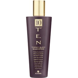 Alterna - Ten - Perfect Blend Shampoo