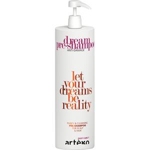 artego-haarpflege-easy-care-t-dream-pre-shampoo-1000-ml