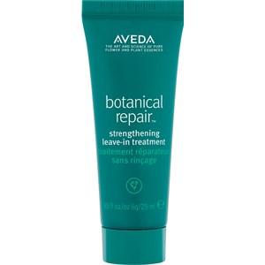 Aveda - Treatment - Botanical Repair Strenghtening Leave-In Treatment