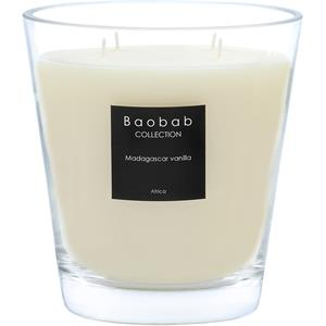 Baobab - All Seasons - Madagascar Vanilla Scented Candle