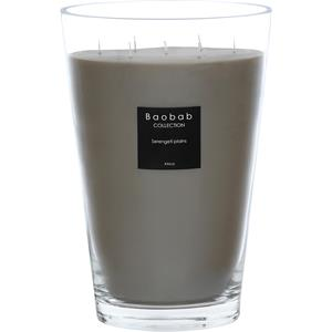 Baobab - All Seasons - Serengeti Plains Scented Candle
