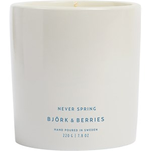 Björk & Berries - Home - Scented Candle