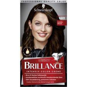 Brillance - Coloration - 880 Dunkelbraun Stufe 3 Intensive colour cream