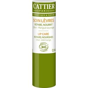 Cattier - Gesichtspflege -  Olive & Mango Lippenpflege