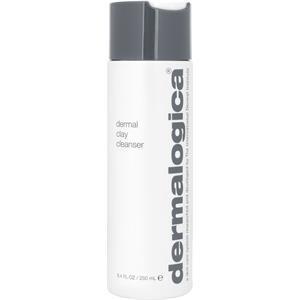 Dermalogica Pflege Skin Health System Dermal Clay Cleanser