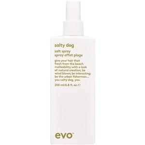 EVO - Styling - Salt Spray