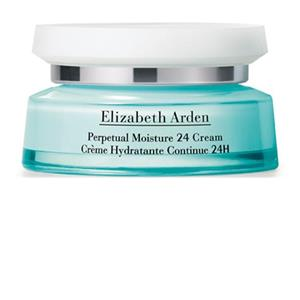 Elizabeth Arden - Visible Difference - Perpetual Moisture 24 Cream