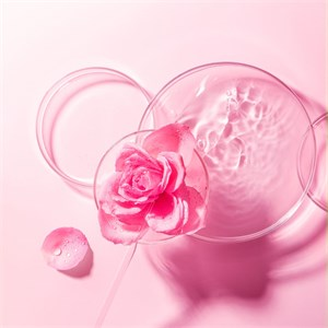 Foreo - Intelligent Treatment with Masks - UFO Mask Bulgarian Rose