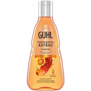 Guhl - Shampoo - Feuchtigkeitsaufbau Shampoo