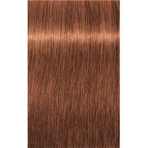 INDOLA - PCC Red & Fashion - 6.4 Dunkelblond Kupfer