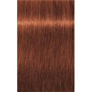 INDOLA - PCC Red & Fashion - 6.44 Dunkelblond Kupfer Intensiv