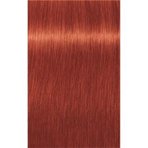INDOLA - PCC Red & Fashion - 8.44x Hellblond Extra Kupfer