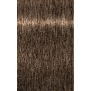 INDOLA - Xpress Color - 6.03 Dunkelblond Natur Gold