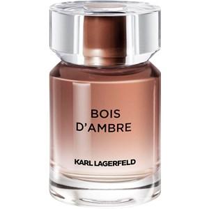 Karl Lagerfeld - Les Parfums Matières - Bois d'Ambre Eau de Toilette Spray