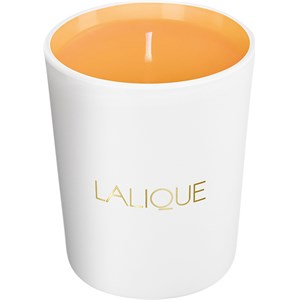 Lalique - Les Compositions Parfumées - Sweet Amber Candle