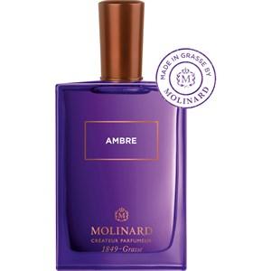 Molinard - Les Éléments - Ambre Eau de Parfum Spray