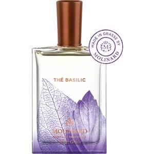 molinard the basilic