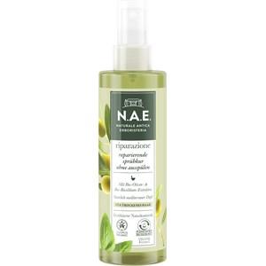 N.A.E. - Hair care - Reparierende Sprüh Kur