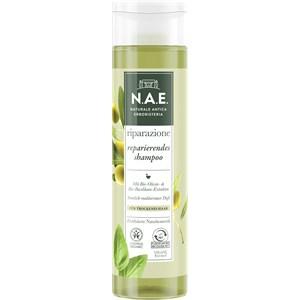 N.A.E. - Hair care - Dry hair Hi Impact