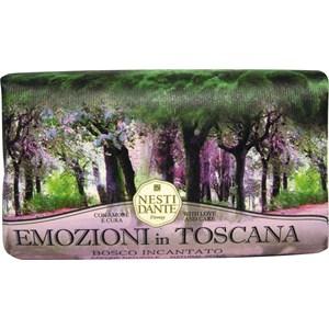 nesti-dante-firenze-pflege-emozione-in-toscana-bosco-incantato-soap-250-g