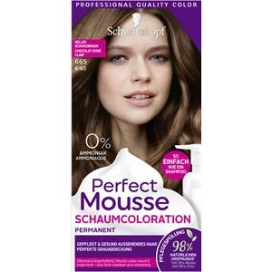 Perfect Mousse - Coloration - Schaumcoloration