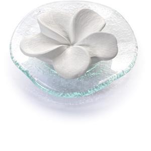 primavera-home-duftsteine-duftstein-frangipani-1-stk-