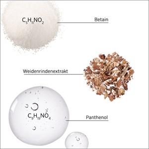 System Professional Energy Code - Balance - Shampoo B1