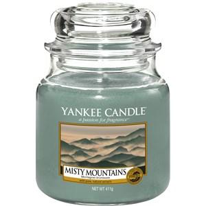 yankee-candle-raumdufte-duftkerzen-misty-mountains-104-g