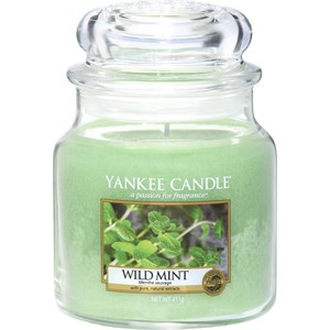 yankee-candle-raumdufte-duftkerzen-wild-mint-411-g