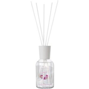 Ipuro - Season Line - White Orchid