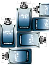 Paradise Bay Men
