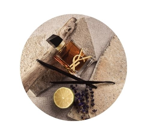 Beliebte Parfums
